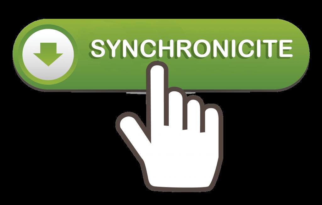 GENERATEUR DE SYNCHRONICITES